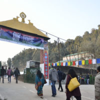 'D' Is for DIFF, Dharamshala and Diversity!